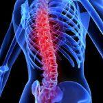脊髄損傷に対する再生医療のトピックス2件